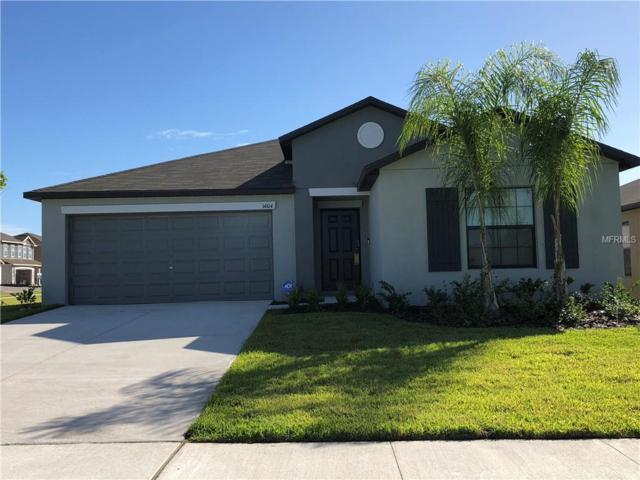 14104 Covert Green Place, Riverview, FL 33579 (MLS #T3139759) :: Medway Realty