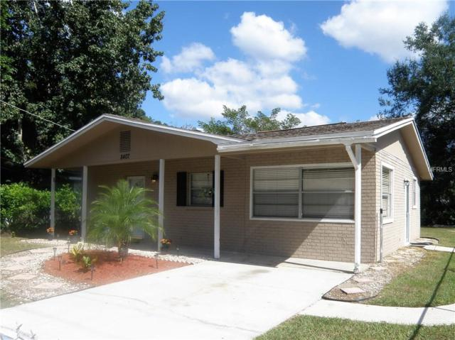8407 N Orangeview Avenue, Tampa, FL 33617 (MLS #T3139910) :: Medway Realty