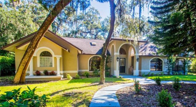 360 10TH Avenue S, Safety Harbor, FL 34695 (MLS #T3139916) :: Medway Realty