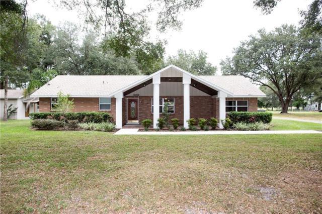 12808 Sydney Road, Dover, FL 33527 (MLS #T3139974) :: Team Bohannon Keller Williams, Tampa Properties