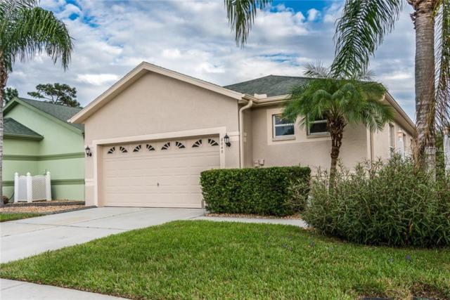 8040 Sanguinelli Road, Land O Lakes, FL 34637 (MLS #T3140031) :: Delgado Home Team at Keller Williams