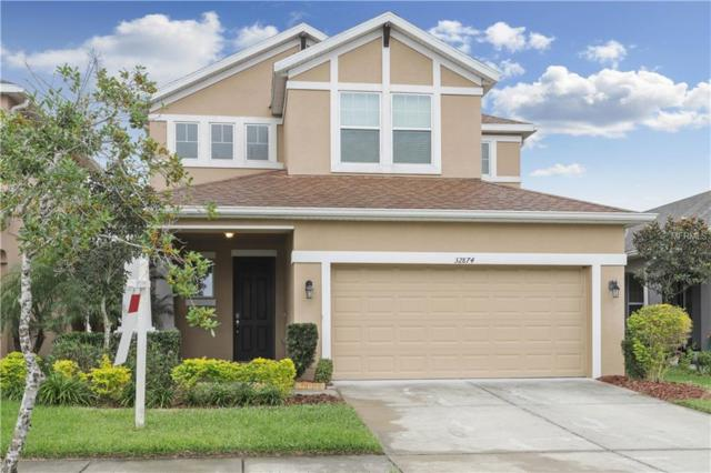 32874 Windelstraw Drive, Wesley Chapel, FL 33545 (MLS #T3140065) :: Team Bohannon Keller Williams, Tampa Properties