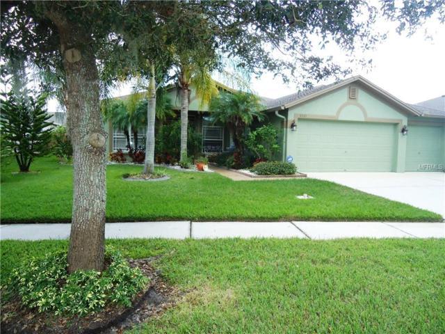 6521 Carrington Sky Dr, Apollo Beach, FL 33572 (MLS #T3140089) :: Lovitch Realty Group, LLC