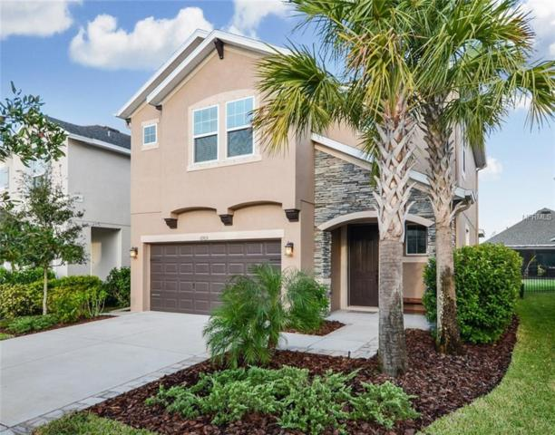 6905 Old Benton Drive, Apollo Beach, FL 33572 (MLS #T3140203) :: Premium Properties Real Estate Services
