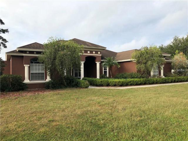 24355 Hideout Trail, Land O Lakes, FL 34639 (MLS #T3140372) :: Delgado Home Team at Keller Williams
