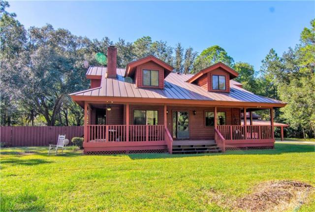 7705 Westpoint Drive, Wesley Chapel, FL 33544 (MLS #T3140398) :: Cartwright Realty