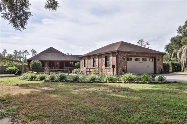 13845 Haynes Road, Dover, FL 33527 (MLS #T3140400) :: Mark and Joni Coulter | Better Homes and Gardens