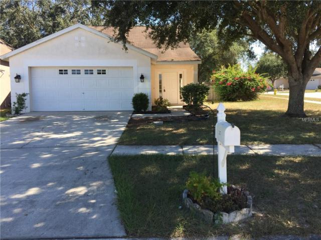 315 Summer Sails Drive, Valrico, FL 33594 (MLS #T3140401) :: Premium Properties Real Estate Services