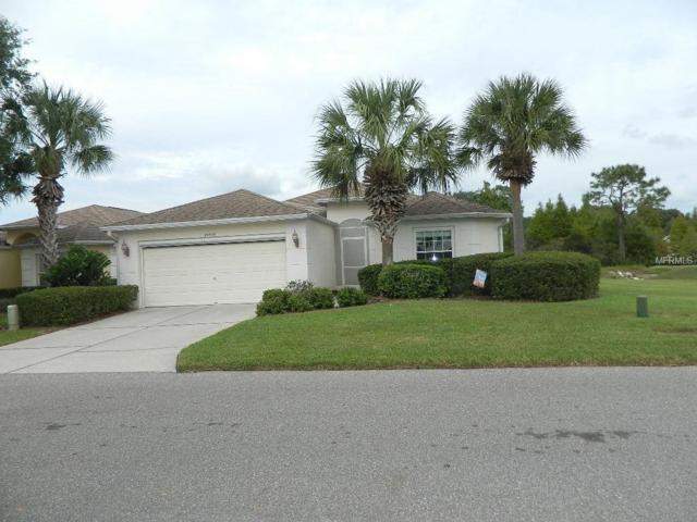 29539 Waggle Drive, San Antonio, FL 33576 (MLS #T3140423) :: Delgado Home Team at Keller Williams