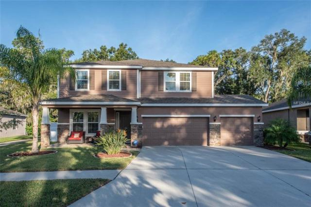 10325 Riverdale Rise Drive, Riverview, FL 33578 (MLS #T3140594) :: RE/MAX CHAMPIONS
