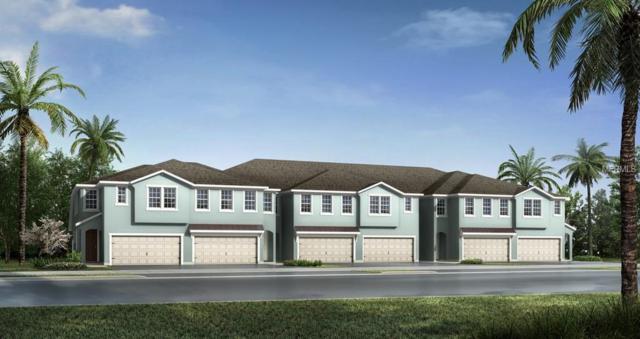 14226 Pondhawk Lane 73K, Tampa, FL 33625 (MLS #T3140618) :: Cartwright Realty