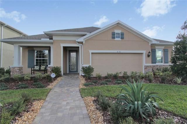 14796 Trails Edge Boulevard, Odessa, FL 33556 (MLS #T3140661) :: Premium Properties Real Estate Services