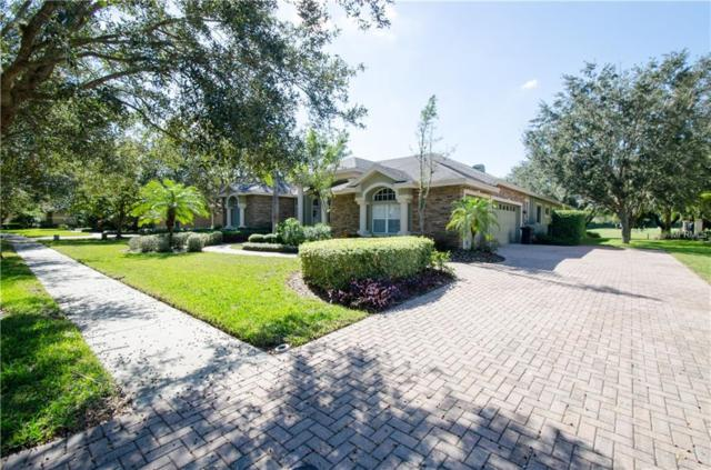 1377 Playmoor Drive, Palm Harbor, FL 34683 (MLS #T3140703) :: Medway Realty