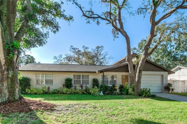 11019 Airview Drive, Tampa, FL 33625 (MLS #T3140821) :: KELLER WILLIAMS CLASSIC VI