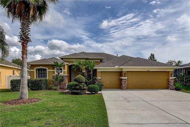 12814 Castlemaine Drive, Tampa, FL 33626 (MLS #T3140842) :: Delgado Home Team at Keller Williams