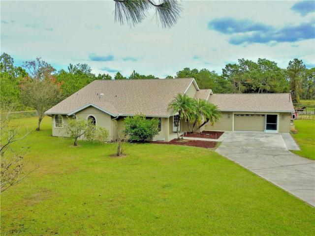 6826 Ehren Cutoff, Land O Lakes, FL 34639 (MLS #T3140876) :: RE/MAX Realtec Group