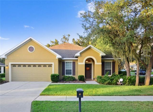 15818 Starling Water Drive, Lithia, FL 33547 (MLS #T3140904) :: The Duncan Duo Team
