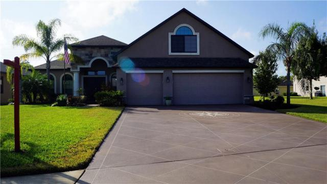 332 Star Shell Drive, Apollo Beach, FL 33572 (MLS #T3140936) :: Lovitch Realty Group, LLC