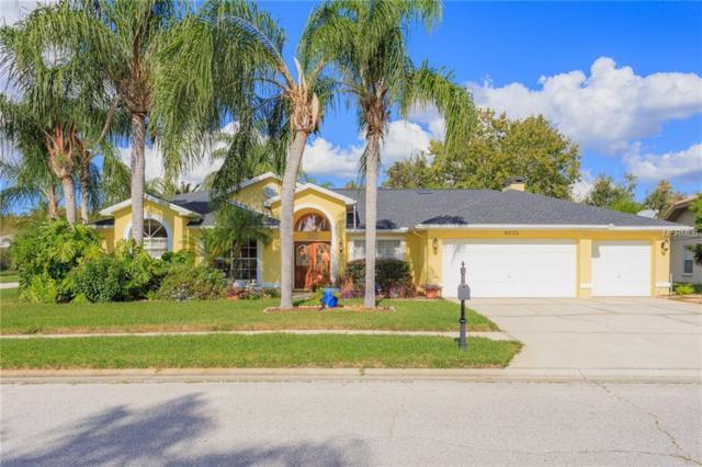 8035 Tantallon Way, Trinity, FL 34655 (MLS #T3141026) :: Lock and Key Team