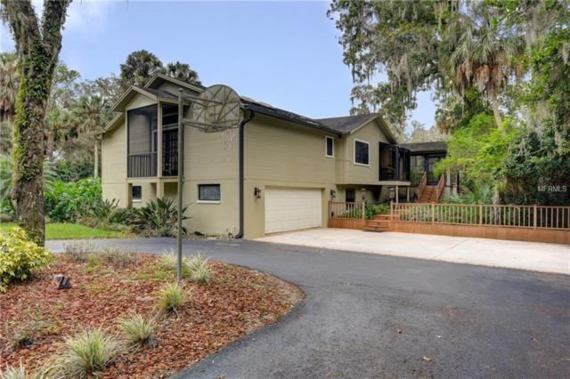 4631 John Moore Road, Brandon, FL 33511 (MLS #T3141060) :: Lovitch Realty Group, LLC