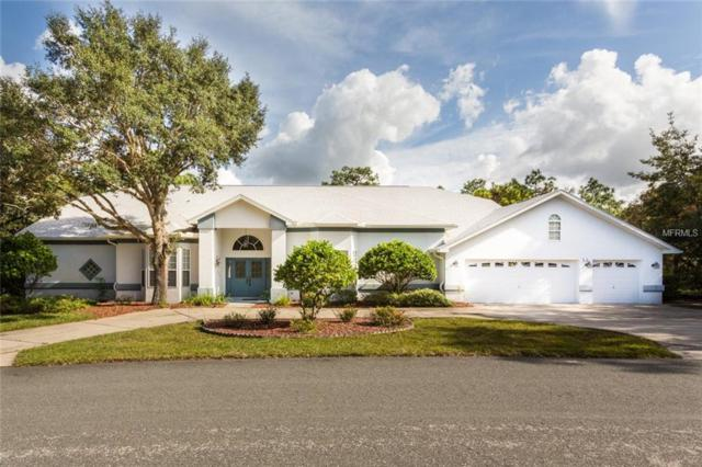 16 Drypetes Court E, Homosassa, FL 34446 (MLS #T3141061) :: The Lockhart Team
