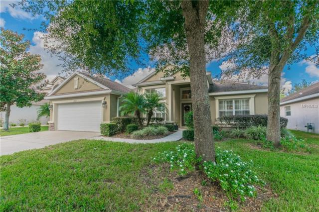 15513 Starling Water Drive, Lithia, FL 33547 (MLS #T3141114) :: The Duncan Duo Team