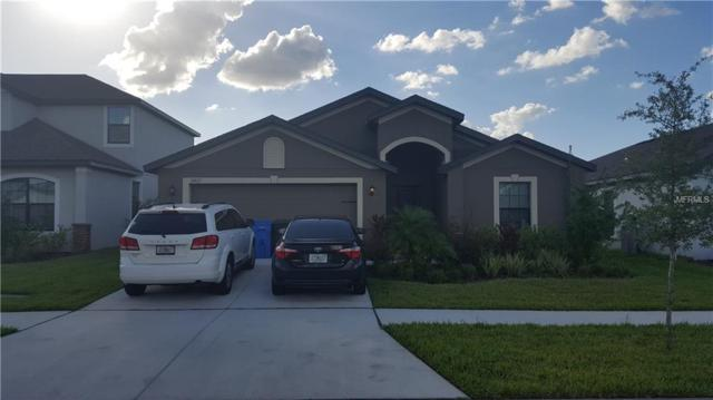 11827 Thicket Wood Drive, Riverview, FL 33579 (MLS #T3141130) :: The Duncan Duo Team