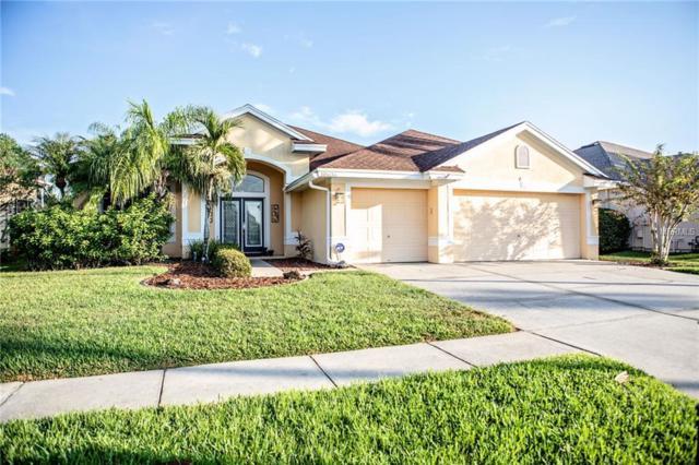 10636 Gretna Green Drive, Tampa, FL 33626 (MLS #T3141144) :: Delgado Home Team at Keller Williams