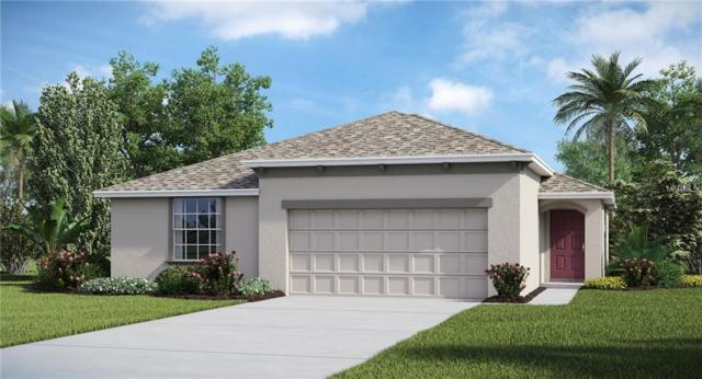 10112 Crested Fringe Drive, Riverview, FL 33578 (MLS #T3141239) :: The Duncan Duo Team