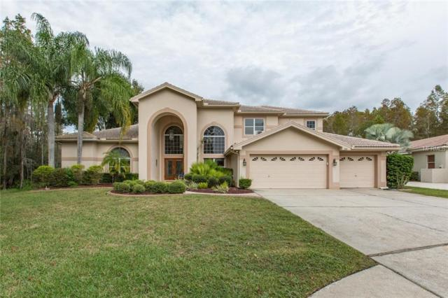 998 Carstairs Court, Tarpon Springs, FL 34688 (MLS #T3141276) :: Team Virgadamo