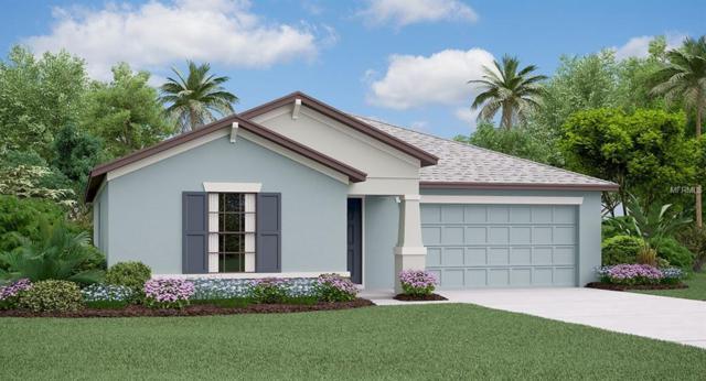 10005 Rose Petal Place, Riverview, FL 33578 (MLS #T3141318) :: Medway Realty