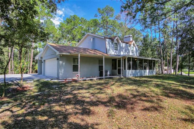 28401 Lindenhurst Drive, Wesley Chapel, FL 33544 (MLS #T3141332) :: Lock and Key Team