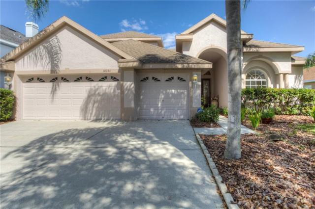 10234 Deercliff Drive, Tampa, FL 33647 (MLS #T3141438) :: Team Bohannon Keller Williams, Tampa Properties
