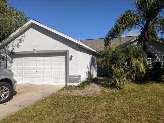 1316 Vinetree Drive, Brandon, FL 33510 (MLS #T3141450) :: Remax Alliance