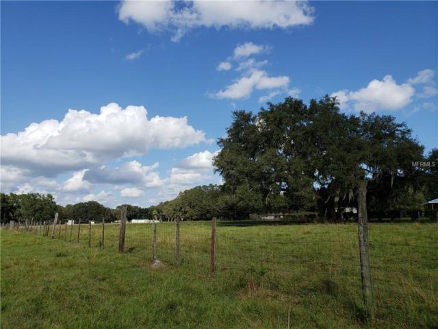 0 Blankenship Road, Dover, FL 33527 (MLS #T3141459) :: Griffin Group