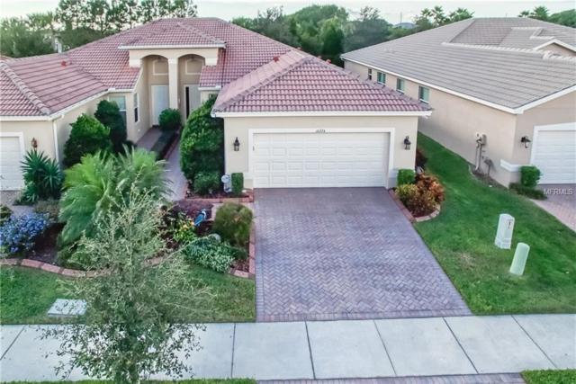 16224 Amethyst Key Drive, Wimauma, FL 33598 (MLS #T3141565) :: Delgado Home Team at Keller Williams