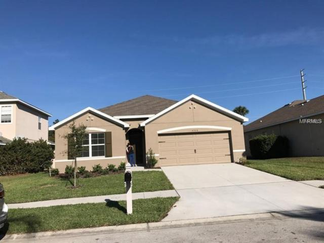 4368 Edenrock Place, Spring Hill, FL 34609 (MLS #T3141574) :: The Light Team