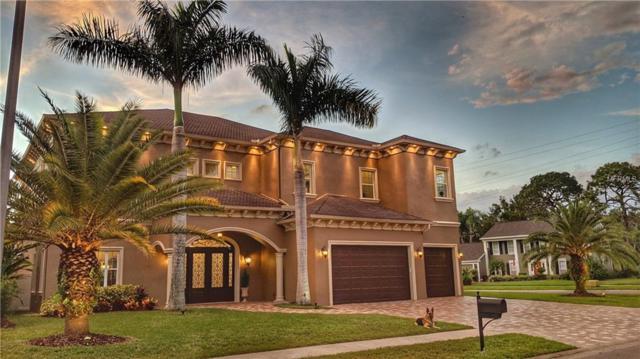 4610 Apple Ridge Lane, Tampa, FL 33624 (MLS #T3141652) :: Lock and Key Team