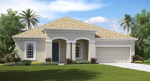 11801 Sunburst Marble Drive, Riverview, FL 33579 (MLS #T3141655) :: The Duncan Duo Team