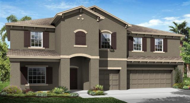 11803 Sunburst Marble Drive, Riverview, FL 33579 (MLS #T3141661) :: The Duncan Duo Team