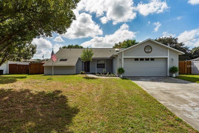 14128 Segovia Street, Spring Hill, FL 34609 (MLS #T3141671) :: Baird Realty Group