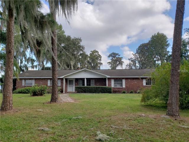 19609 Michigan Avenue, Odessa, FL 33556 (MLS #T3141706) :: Lovitch Realty Group, LLC