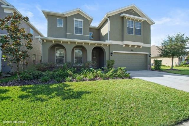 19310 Water Maple Drive, Tampa, FL 33647 (MLS #T3141771) :: Team Bohannon Keller Williams, Tampa Properties