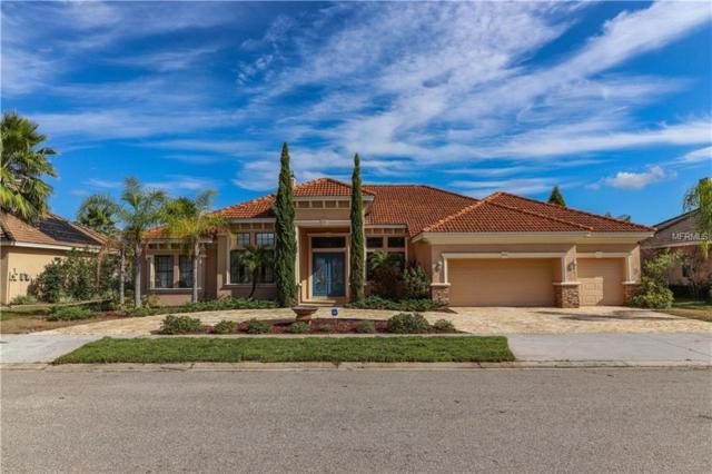 2513 Cumberland Cliff Drive, Ruskin, FL 33570 (MLS #T3141784) :: Dalton Wade Real Estate Group