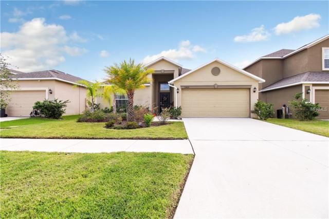 12405 Ballentrae Forest Drive, Riverview, FL 33579 (MLS #T3141796) :: The Duncan Duo Team