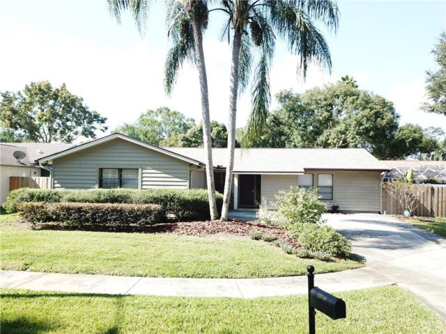 15710 Bovine Place, Tampa, FL 33624 (MLS #T3141831) :: The Edge Group at Keller Williams