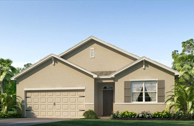 2572 Garden Plum Place, Odessa, FL 33556 (MLS #T3141922) :: Griffin Group