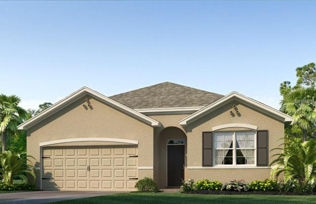 2569 Garden Plum Place, Odessa, FL 33556 (MLS #T3141925) :: Griffin Group