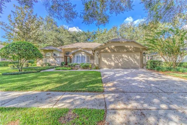 3821 Turkey Oak Drive, Valrico, FL 33596 (MLS #T3142073) :: Griffin Group