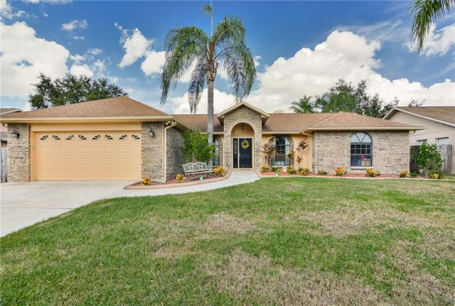 1408 Monte Lake Drive, Valrico, FL 33596 (MLS #T3142087) :: Griffin Group